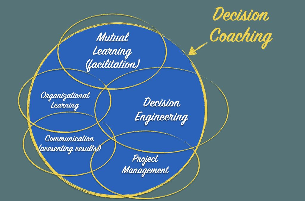 What is  a professional decision coach?